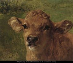 rosa bonheur paintings | Head Of A Calf - Rosa Bonheur - WikiGallery.org, the largest gallery ...