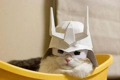 awwww-cute:  Awesome Helmet