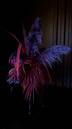 Dark Perfection Floral Style, Floral Design, Arte Floral, Pampas Grass, Ikebana, Event Decor, Wedding Designs, Flower Designs, Flower Pots