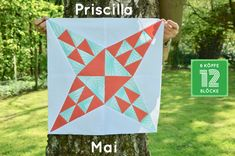 Foundation Paper Piecing, Barn Quilts, Quilting Projects, Quilt Blocks, Mai, Blanket, Sewing, Pattern, Crafts
