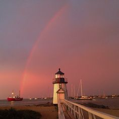 Cape Cod Charm Happy As A Clam  Serafini Amelia  Cape Cod, MA, Nantucket Island