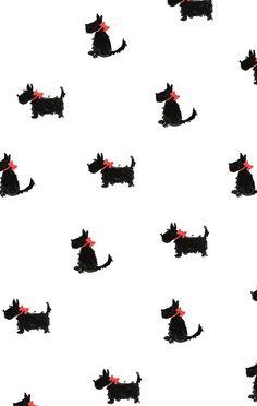 Yorkies, in red by Joy Laforme, iPhone wallpaper Images Wallpaper, Animal Wallpaper, Cute Wallpapers, Emoji Wallpaper, Colorful Wallpaper, Iphone Wallpapers, Cute Backgrounds, Wallpaper Backgrounds, Pattern Art