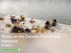 https://www.tripadvisor.com/Attraction_Review-g274887-d1063833-Reviews-Shoes_on_the_Danube_Promenade_Memorial-Budapest_Central_Hungary.html?m=19904