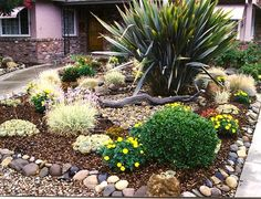 """William Stuve has created what he calls a """"dry creek rock garden"""" at his home in San Jose. Dry Creek, Garden Types, Pond, Living Spaces, Backyard, Landscape, Plants, Image, San Jose"""