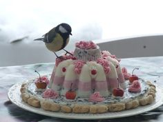 Bird feed cake~! Man oh man oh man, I wanna find the recipe for this pretty little cake.