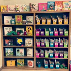 "Kindergarten Lessons & Ideas on Instagram: ""I love this class library display in Blossoming Memories.in.first.grade 's classroom. Such a great way to get students interested in reading.…"""