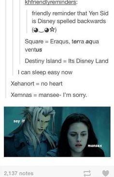 Hahaha, yes Kingdom Hearts Meme, Kh 3, Kindom Hearts, Sora, Theme Song, Funny Games, Final Fantasy, Videogames, It Hurts