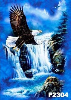 New Needlework Eagle Falls scenery Diamond Painting Mosaic Diamond Embroidery With Home Decoration Eagle Artwork, Arte Zombie, Eagle Pictures, Native American Images, Cat Run, Artist Supplies, Dog Runs, Diamond Art, Belle Photo