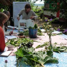 Workshop: Hoe bouw ik een helofytenfilter? – Zelf water zuiveren met behulp van planten