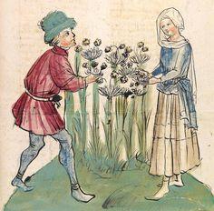 Konrad von Megenberg Das Buch der Natur — Hagenau - Werkstatt Diebold Lauber, um 1442-1448? Cod. Pal. germ. 300 Folio 296r