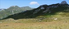 Rumunské hory, ovce, slunce, nádhera :)