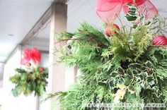 winter hanging baskets - Sow & Dipity