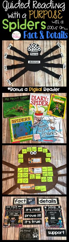 This unit was created for one week of whole group guided reading and writing. The theme for the week is SPIDERS. The focus reading strategy is fact and details although there is SO MUCH more included.  There are daily lesson plans, anchor charts, literacy connections, sorting activities, crafts, a report, a digital informative text, and small projects. It is all you will need and more to introduce, cover, and teach your students about spiders.