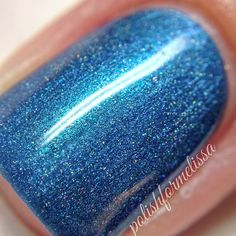 Above the Curve Polish Tardis
