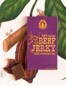 Beef Jerky Bar from Wild Ophelia - fascinating chocolate combination!