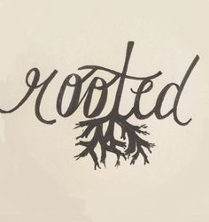 Rooted ...in Jesus Christ! {Colossians 2:7, Ephesians 3:17}