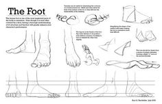 Enjoy a collection of references for Character Design: Feet Anatomy. The collection contains illustrations, sketches, model sheets and tutorials… This Foot Anatomy, Anatomy Study, Anatomy Drawing, Human Anatomy, Feet Drawing, Drawing Tips, Drawing Reference, Was Ist Pinterest, Sketches Tutorial