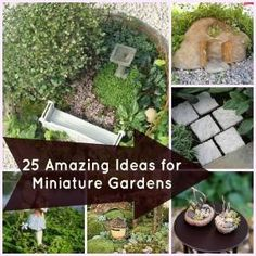 25 Perfect Accessories for Miniature Gardens - cute board with lots of ideas for fairy gardens ! by SookieLauritz