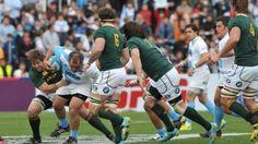 """Rugby Championship: la """"garra"""" argentina non basta e il Sudafrica beffa i Pumas (16-16)"""
