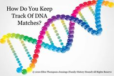How Do You Keep Track Of DNA Matches? – Hound on the Hunt