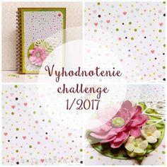 Vyhodnotenie challenge 1/2017 / Challenge 1/2017 winner