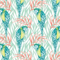 Tropical Parrots by Amanda Dilworth
