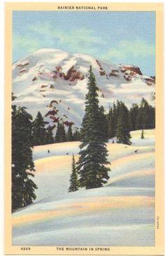 Vintage Washington State Postcard  Mount Rainier in by VintagePlum