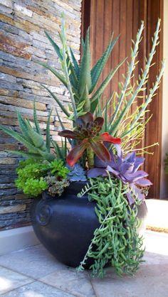 Great combination// Great Gardens & Ideas //
