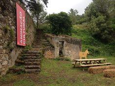 Gostas de Natureza? Vais amar a Quinta do Pisão no Parque Natural de Sintra-Cascais