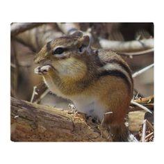 Chipmunk eating nut Throw Blanket on CafePress.com