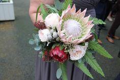 'King Proteas' for Debbie & Liam King's November Wedding Day at Ashfield House November Wedding, Floral Wreath, Wedding Day, King, Wreaths, Weddings, Flowers, House, Beautiful