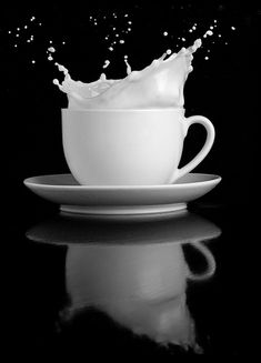 Color Negro y Blanco - Black & White! Splash Photography, Monochrome Photography, Still Life Photography, Black And White Photography, Food Photography, Black And White Pictures, Black And White Colour, Shades Of Black, Effects Photoshop