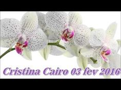 Cristina Cairo 03 fev 2016 - YouTube