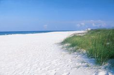 Cape San Blas, FL - miles of unspoiled beaches, tons of seashells and sugary white sands. - Pure Paradise! Oh how I miss the panhadle beaches.