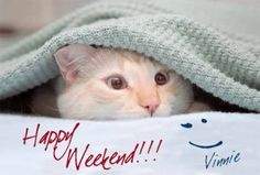 happy-weekend-messages - Messages, Wordings and Gift Ideas