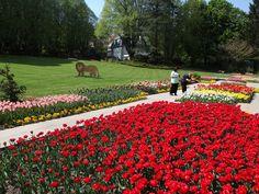 Parcs et jardins | Nature en ville | Photo | La ville en images
