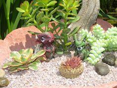 The Papercrete Potter: Simple Succulent Garden in Papercrete Shell....