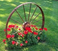 "in Islam Been Changed!"" Wagon wheel with Geraniums, so pretty.Wagon wheel with Geraniums, so pretty.Been Changed!"" Wagon wheel with Geraniums, so pretty.Wagon wheel with Geraniums, so pretty. Cheap Landscaping Ideas, Front Yard Landscaping, Mulch Landscaping, Fence Ideas, Rustic Landscaping, Landscaping Software, Corner Landscaping Ideas, Natural Landscaping, Florida Landscaping"