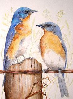 watercolor pencil art | More watercolor, colored pencil, and graphite art