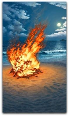 Looks like a great place to be.  Beach fire.