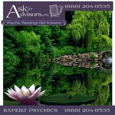 Body worker child guidance  enlightenment healing lightworker love coaching spiritual guidance healing intuitive family matters fidelity theta healing http://www.askforadvisors.com life path marriage professional life success work reconnect to spirit channeling motivation self help  fairy readings magical spells claircognizant clairvoyant business reading