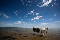 Ende der 1980er Jahre zerfiel der See in zwei Hauptteile: in den Kleinen (nördlichen) und den Großen (südlichen) Aralsee.