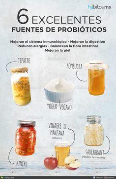 25 Ideas De Microbiota Microbiota Microbiota Intestinal Probióticos