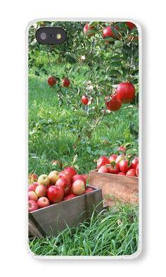 iPhone 5S Case Color Works Apple Box Garden Transparent PC Hard Case For Apple iPhone 5S Phone Case https://www.amazon.com/iPhone-Color-Works-Garden-Transparent/dp/B015VTORJO/ref=sr_1_8957?s=wireless&srs=9275984011&ie=UTF8&qid=1469692896&sr=1-8957&keywords=iphone+5s https://www.amazon.com/s/ref=sr_pg_374?srs=9275984011&fst=as%3Aoff&rh=n%3A2335752011%2Ck%3Aiphone+5s&page=374&keywords=iphone+5s&ie=UTF8&qid=1469692327