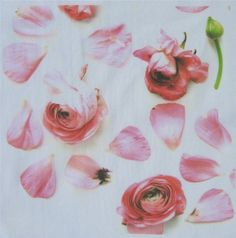 pink petals fabric by bricolagelife