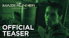 OH MY GOD First official teaser for The Maze Runner!!!! Watch Teen Wolf tonight for the full trailer!!!!