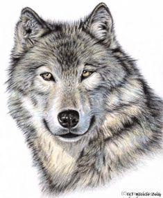 Nicole Zeug - Der Sibirische Wolf