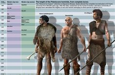 Homo Heidelbergensis vs Neanderthal Vs Cro Magnon - I like how they present our ancestors and human contemporaries as less hairy and more dignified, but I feel disturbed by how hot that Cro-magnon is, he's a babe