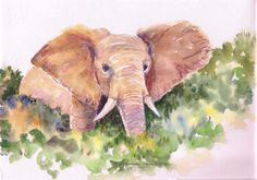 African Elephant watercolors original art Elephant wall art Wall Decor Wild Animal Impressionistic watercolors Elephant painting by ArtbyAshaa on Etsy