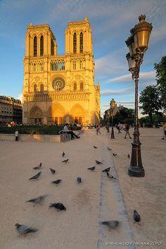 ❥♡♡❥ @KatieSheaDesign ❥♡♡❥ #Images  Ile de la Cité, Notre Dame, Paris IV